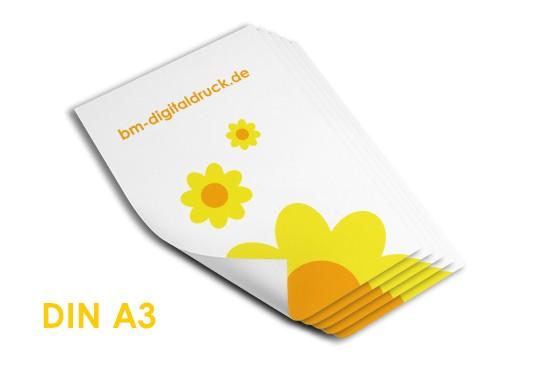 A3 Poster digital in Nürnberg bestellen