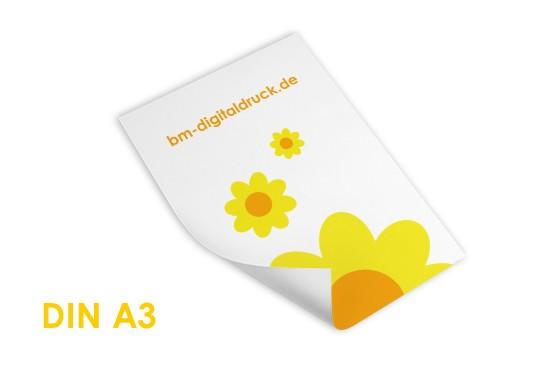 Plakat auf Fotopapier im Digitaldruck aus Nürnberg